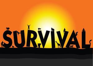 Survival Package